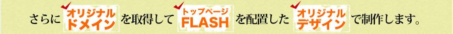さらに、オリジナルドメインを取得してFLASHを配置したオリジナルデザインで制作致します。